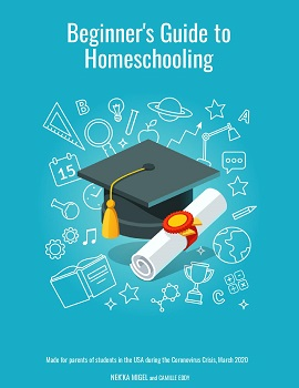 how to begin home schooling or remote learning